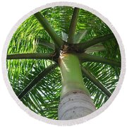 Palm Unbrella Round Beach Towel