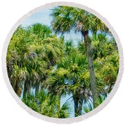 Palmetto Palm Trees In Sub Tropical Climate Of Usa Round Beach Towel