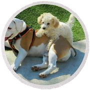 Pals - Linus And Buddy Round Beach Towel