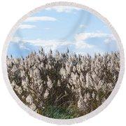 Pampas Grass Round Beach Towel
