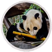 Panda Bear Round Beach Towel