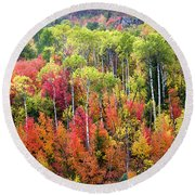 Panoply Of Autumn Color Round Beach Towel