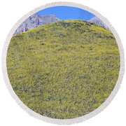 Panoramic View Of Desert Gold Yellow Round Beach Towel