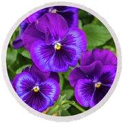 Pansies In Purple And Blue Round Beach Towel