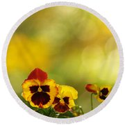 Pansies In The Autumn Glow Round Beach Towel