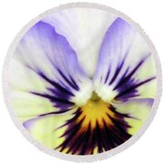 Pansy 01 - Thoughts Of You Round Beach Towel