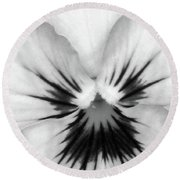 Pansy 02 Bw - Thoughts Of You Round Beach Towel