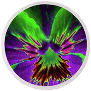 Pansy 02 - Photopower - Thoughts Of You Round Beach Towel