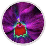 Pansy 03 - Photopower - Thoughts Of You Round Beach Towel