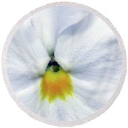 Pansy 03 - Thoughts Of You Round Beach Towel