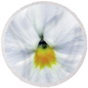 Pansy 05 - Thoughts Of You Round Beach Towel