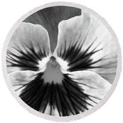 Pansy 06 Bw - Thoughts Of You Round Beach Towel
