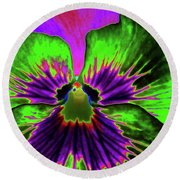 Pansy 06 - Photopower - Thoughts Of You Round Beach Towel