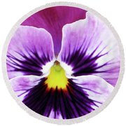 Pansy 07 - Thoughts Of You Round Beach Towel