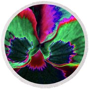 Pansy 10 - Photopower - Thoughts Of You Round Beach Towel