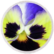 Pansy 10 - Thoughts Of You Round Beach Towel