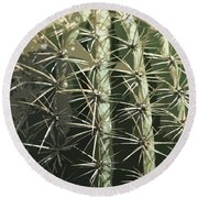 Paper Cactus Round Beach Towel