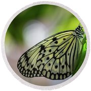 Paper Kite Butterfly- 2 Round Beach Towel