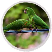 Parakeet Couple Round Beach Towel