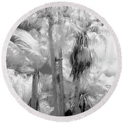 Parking Lot Palms 1 1 Round Beach Towel