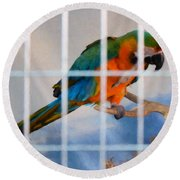 Parrot In A Cage Round Beach Towel