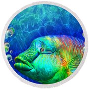 Parrotfish - Rainbow Spirit Round Beach Towel