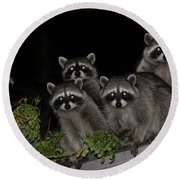 Party Of Five On The Roof Top Round Beach Towel
