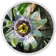 Passion Flower Close-up Round Beach Towel