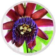 Passion Flower Ver. 5 Round Beach Towel