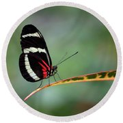 Passion-vine Butterfly 2017 Round Beach Towel