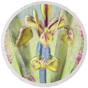 Pastel Iris Round Beach Towel