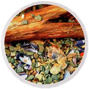 Patagonian Shore Round Beach Towel