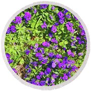 Patch Of Pansies Round Beach Towel