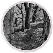 Path In Crownest Woods Round Beach Towel