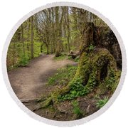 Path In Judy Woods Round Beach Towel