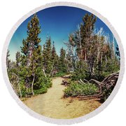 Path On Top Of Mt. Howard, Wallowa Or Round Beach Towel