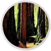 Path Through The Forest Edge . 7d5432 Round Beach Towel
