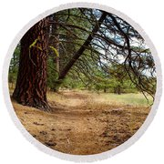 Path To Enlightenment 1 Round Beach Towel