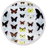Pattern Made Out Of Many Different Butterfly Species Round Beach Towel
