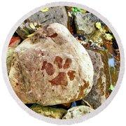 Paws On The Rocks Round Beach Towel
