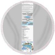 Payan Pool Service Infographics Round Beach Towel