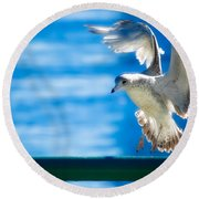 Peace Gull Round Beach Towel