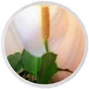 Peace Lily Luminous Round Beach Towel