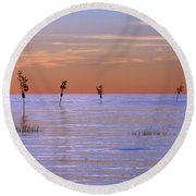 Peaceful View Round Beach Towel