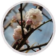Peach Blossoms In Spring Round Beach Towel