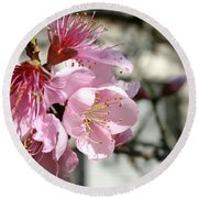 Peach Blossoms Round Beach Towel