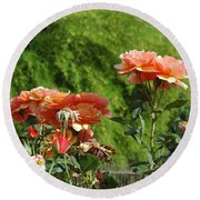 Peach Colored Beauties Round Beach Towel