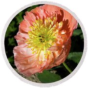 Peach Colored Poppy Round Beach Towel