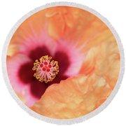Peach Hibiscus - Macro Round Beach Towel