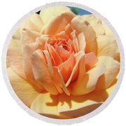 Peach Rose Art Prints Roses Flowers Giclee Prints Baslee Troutman Round Beach Towel
